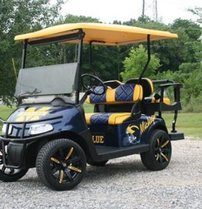 Michigan Themed Blue and Gold Lowered EZ-GO RXV Golf Cart