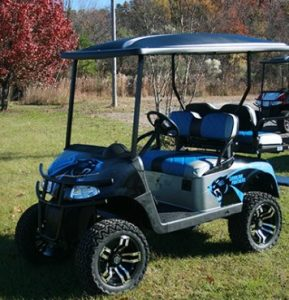 Panthers Themed Blue and Black EZ-GO RXV Golf Cart