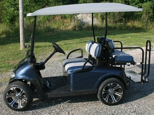 Custom Pearlescent Navy Blue with White EZ-GO RXV Golf Cart