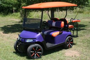 Custom Metallic Purple with Orange EX-GO RXV Golf Cart