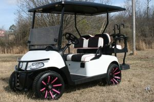 Gloss White with Pink Wheels and Accents EZ-GO Golf Cart